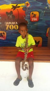 Jamaica Road Trip: Jamaica Zoo. Little Boy with Snake