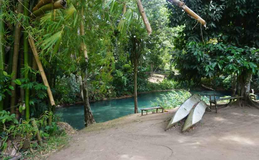 Hidden Beauty: Our River Adventure in Jamaica!
